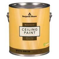 Benjamin Moore 1 Quart Waterborne Ceiling Paint from Blain's Farm and Fleet