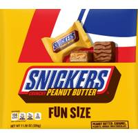 Snickers Fun Size Peanut Butter Squared Bites from Blain's Farm and Fleet