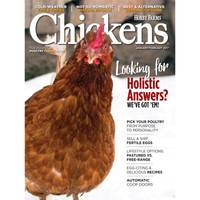 i-5 Publishing Chickens from Blain's Farm and Fleet