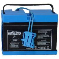 Peg Perego Sealed Battery from Blain's Farm and Fleet