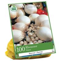 Longfield Gardens Ebeneezer Onion Bulbs from Blain's Farm and Fleet