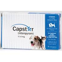 Novartis Capstar Dog Flea Treatment from Blain's Farm and Fleet