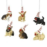 Roman Puppy in Outfit Ornament Assortment from Blain's Farm and Fleet