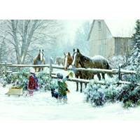 LPG Greetings Feeding Horse Holiday Deluxe Cards from Blain's Farm and Fleet