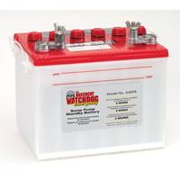 Basement Watchdog Emergency Standby Battery from Blain's Farm and Fleet