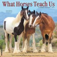 Willow Creek Press What Horses Teach Us 2016 Wall Calendar from Blain's Farm and Fleet