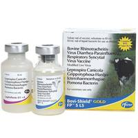 Bovi Shield Gold FP 5 L5 Bovine Rhinotracheitis Virus Diarrhea - Parainfluenza Respiratory Syncytial Virus Vaccine from Blain's Farm and Fleet