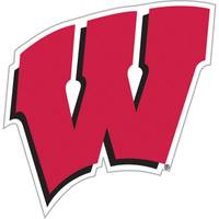 All Star Sports University of Wisconsin Badgers Vinyl Car Magnet from Blain's Farm and Fleet
