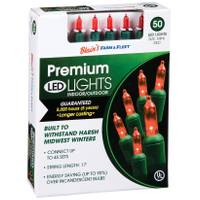 Blain's Farm & Fleet Red 50-Light LED Light Set from Blain's Farm and Fleet