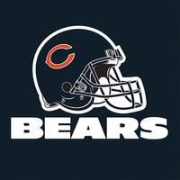 NFL Chicago Bears Luncheon Napkins from Blain's Farm and Fleet