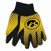 All Star Sports Iowa Two-Tone Gloves from Blain's Farm and Fleet
