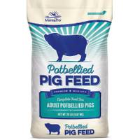 Manna Pro Potbellied Pig Feed from Blain's Farm and Fleet