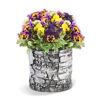 Surreal Round Planter Box from Blain's Farm and Fleet