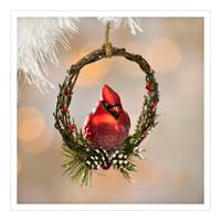Caffco International Cardinal in Wreath Ornament from Blain's Farm and Fleet