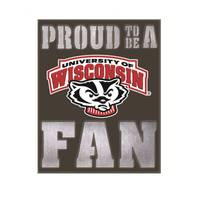 Team Sports America Wisconsin Badgers Metal LED Wall Decor from Blain's Farm and Fleet