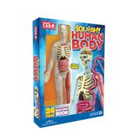 SMART LAB Squishy Human Body from Blain's Farm and Fleet