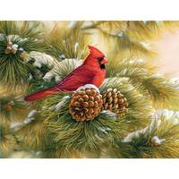 Lang December Dawn Boxed Christmas Cards from Blain's Farm and Fleet