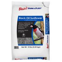 Blain's Farm & Fleet 10 lb. Black Oil Sunflower Bird Seed from Blain's Farm and Fleet