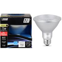 FEIT Electric High Powered Dimmable Performance LED from Blain's Farm and Fleet