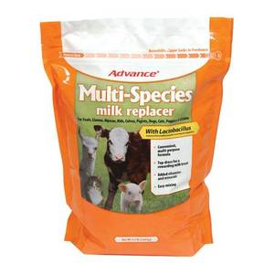 Advance Multi-Species Milk Replacer with Lactobacillus