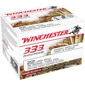 Winchester 22 Long Rifle Cartridge