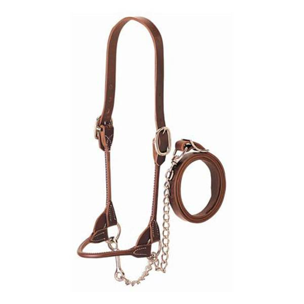 Brown Rounded Show Halter