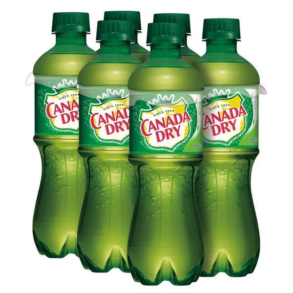 Ginger Ale - 6 Pack