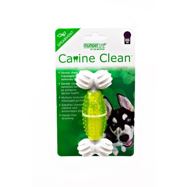 Canine Clean Spearmint Bone Toy