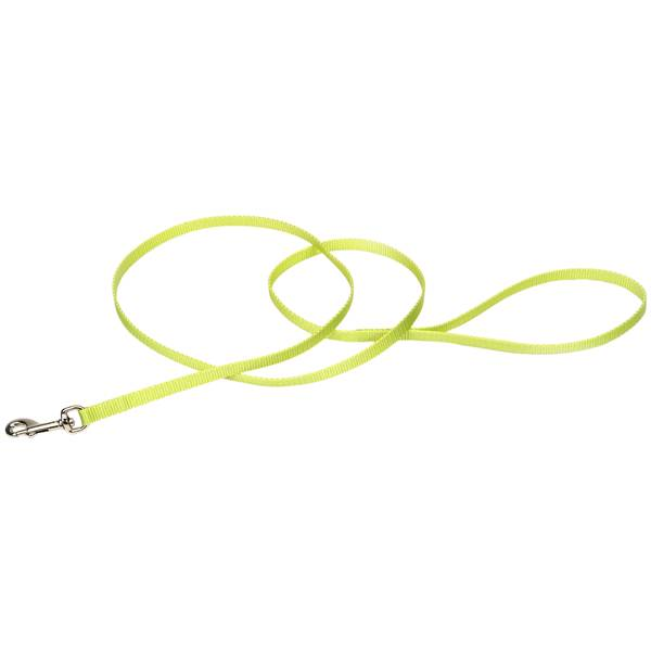 Lime Nylon Dog Leash