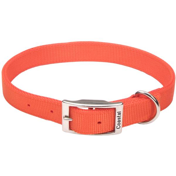 Double-Ply Dog Collar