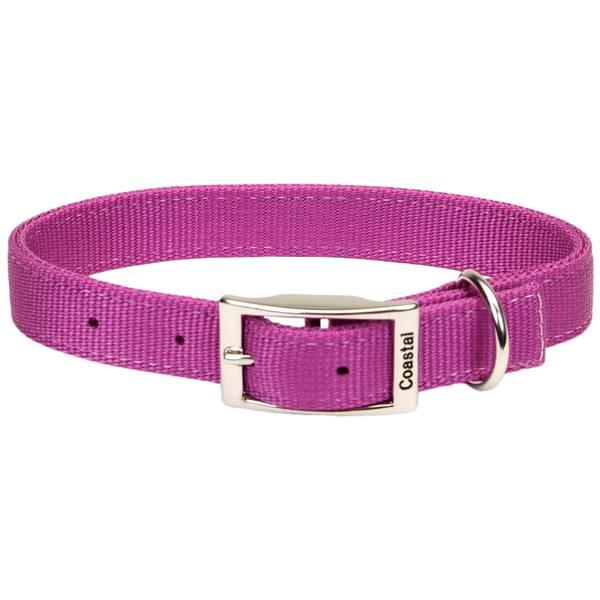 Standard Dog Collar