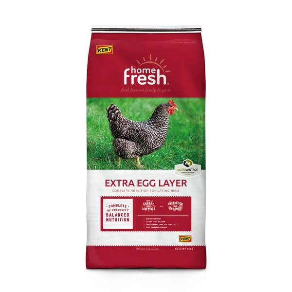 Home Fresh Extra Egg Layer