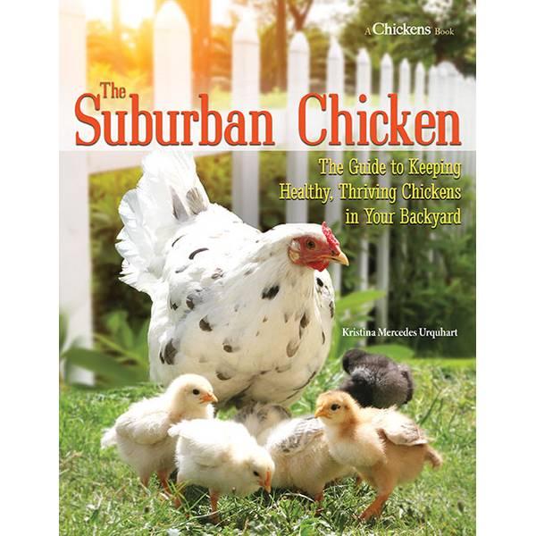 Suburban Chicken
