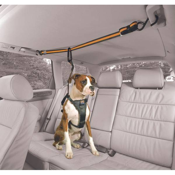 Leash & Zipline Dog Vehicle Restraint