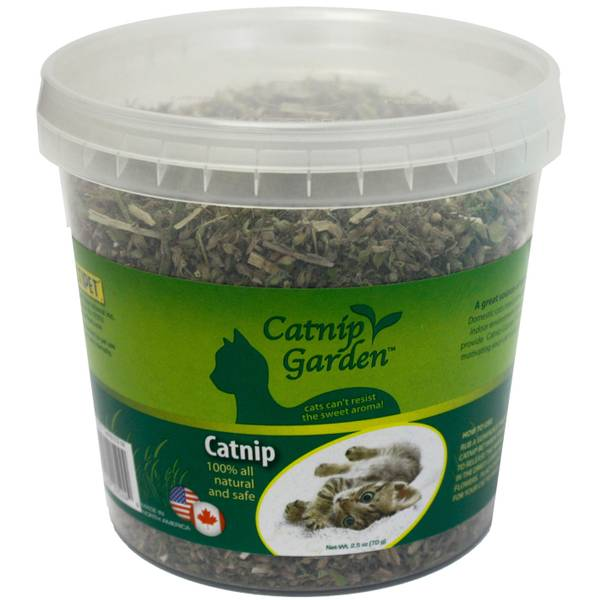 Catnip Garden Tub Toy