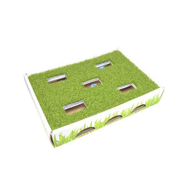 Grass Patch Hunting Cat Play Box