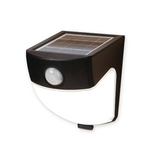 LED Solar Wedge Motion Light