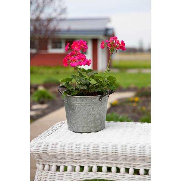 "8"" Washtub Planter"