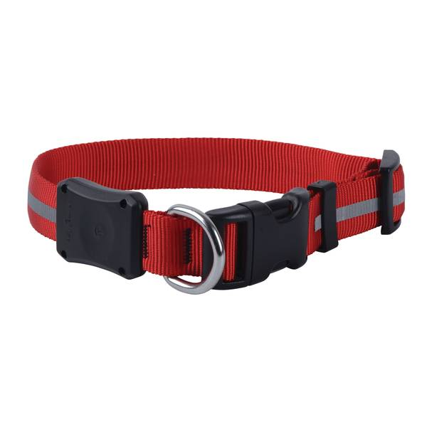 NiteDawg LED Dog Collar Medium Red