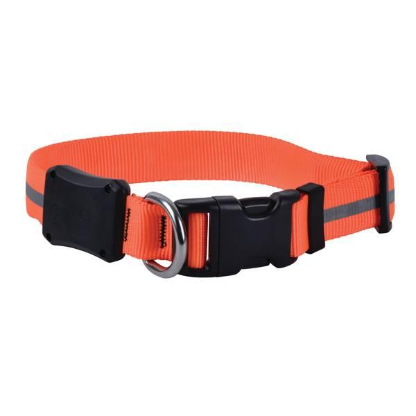 NiteDawg LED Dog Collar Medium Orange