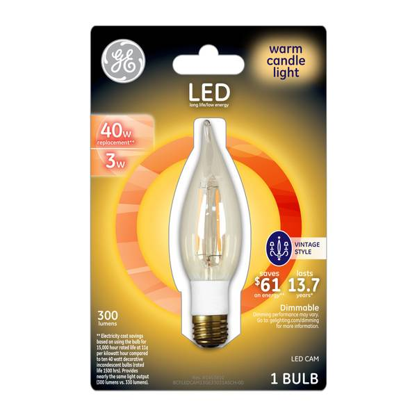 Vintage Style Cam Light Bulb