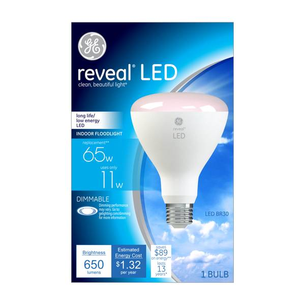 Reveal LED Indoor Floodlight Dimmable Bulb
