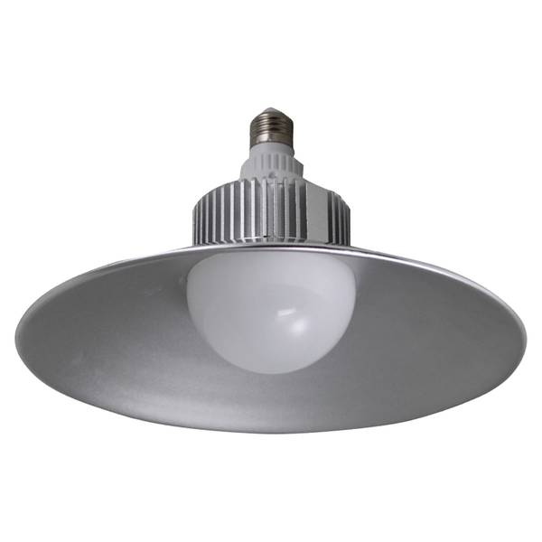 LED Utility Light Bulb