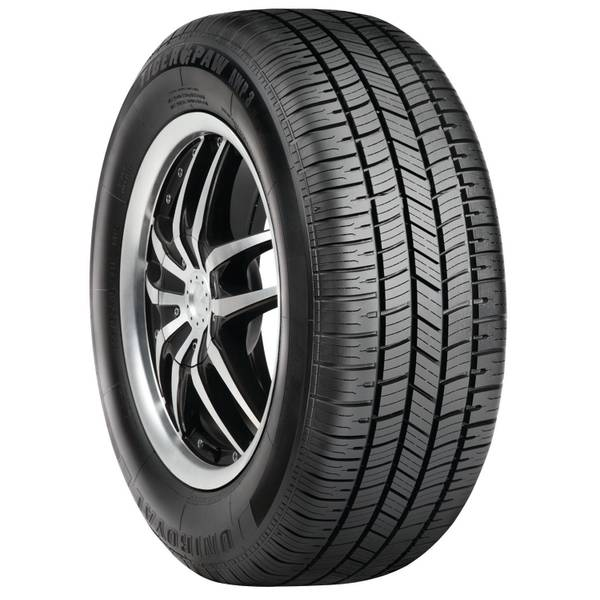 Tiger Paw AWP III Radial Tire - 225/60R16
