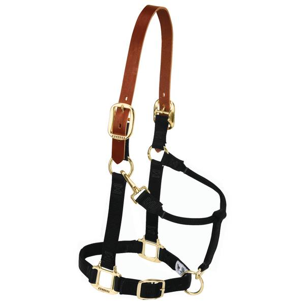 Original Breakaway Adjustable Halter
