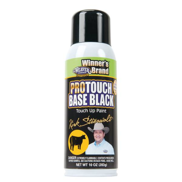 Pro Touch Base Black