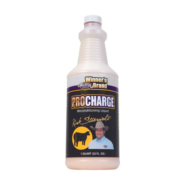 Pro Charge Reconditioning Liquid