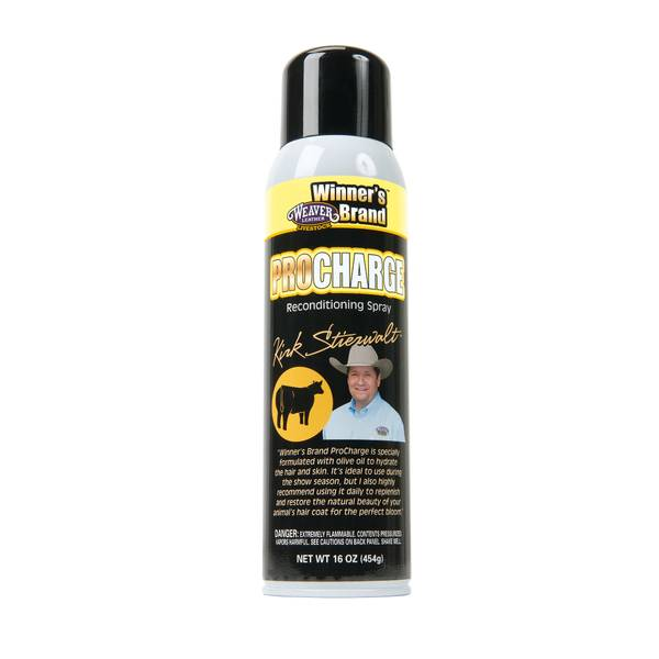 Pro Charge Reconditioning Spray