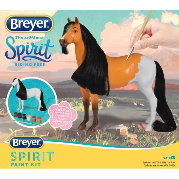 Spirit Paint Kit Assortment