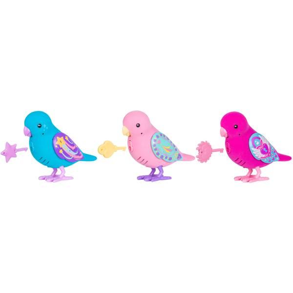 Single Bird Assortment